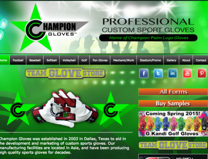 ChampionGloves