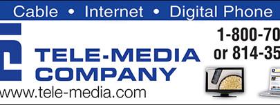 TelemediaSample